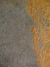 Real Red Rust